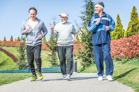 youthful: Group of seniors making jogging at the park