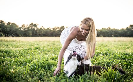 woman in field: Beautiful woman with her loyal border collie