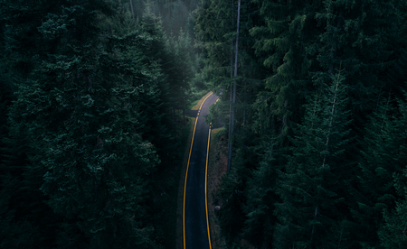 Aerial view of a road in the middle of the forest