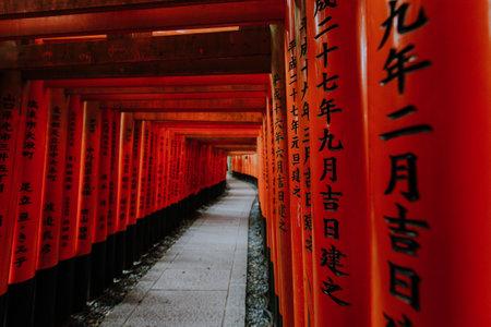 The fushimi-inari path in Kyoto