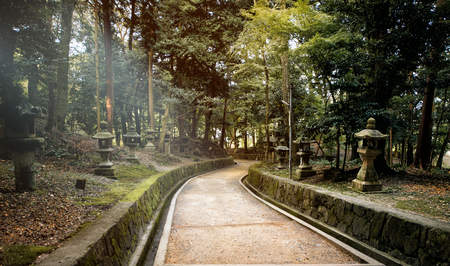 Japan, temple street with forest and traditional lanterns