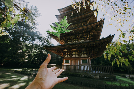 Daigoji temple in Kyoto, japan Editorial