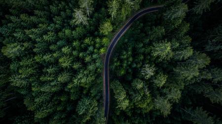 Narrow street between woodland, drone's view