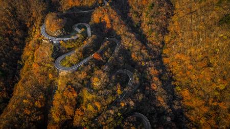 Narrow street between woodland, drones view - Irohazaki winding road, Nikko 版權商用圖片
