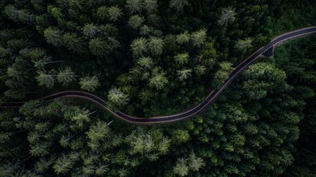 Smalle straat tussen bos, uitzicht op drone Stockfoto
