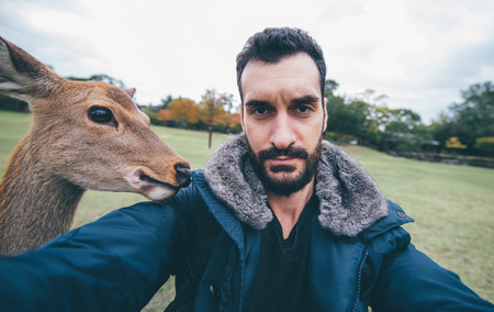 Deers and animals in Nara park, kyoto, Japan,taking selfies with animals