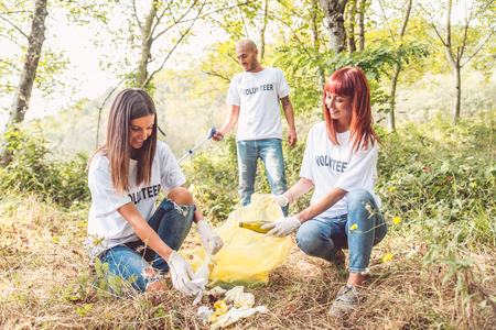 Team of volunteers cleaning woods from trash Stock Photo