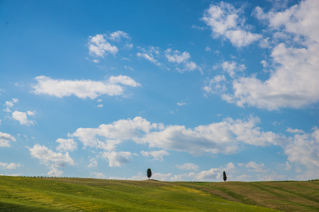 Scenic Tuscany landscape with rolling hills and beautiful cloudscape in Val dOrcia Italy