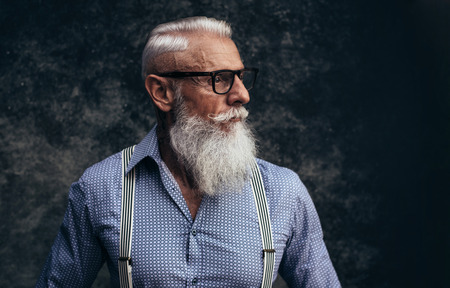 Senior hipster with stylish beard portraits Фото со стока