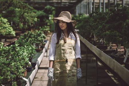 Hübsche Gärtnerin, die sich um Pflanzen in ihrem Blumen- und Pflanzenladen kümmert - asiatische Frau, die in einem Gewächshaus arbeitet
