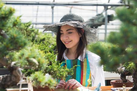 Hübsche Gärtnerin, die sich um Pflanzen in ihrem Blumen- und Pflanzenladen kümmert - Asiatin, die in einem Gewächshaus arbeitet Standard-Bild