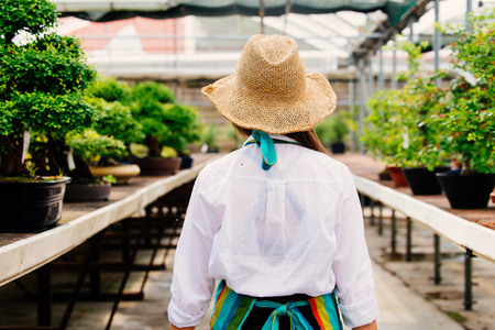 Pretty female gardener taking care of plants in her flowers and plants shop - Asian woman working in a greenhouse Standard-Bild