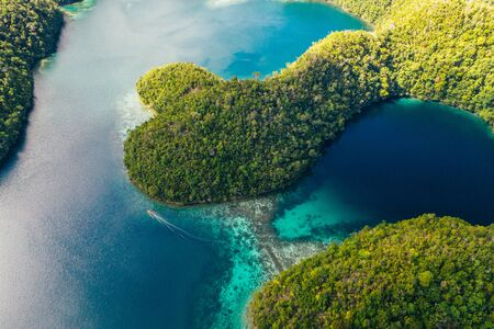 Sugba lagoon in Siargao,philippines. Aerial shot taken with drone on the mangroves forest cove