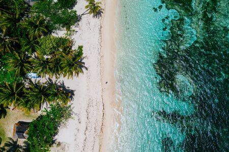 Mann steht am Strand und genießt den tropischen Ort mit Aussicht. karibische Meeresfarben und Palmen im Hintergrund. Konzept über Reisen und Lifestyle