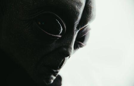 La criatura alienígena tiene un mensaje para los humanos. Humanoide tipo gris de otra serie de retratos de planetas. Foto de archivo