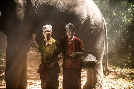 Elephant and farmers in asian countryside in Thailand - Thai elephant in Surin region Stock fotó
