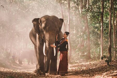 Elephant with beautiful girl in asian countryside, Thailand Imagens