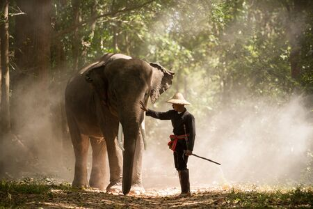 Elephant and farmer in asian countryside in Thailand Stock fotó