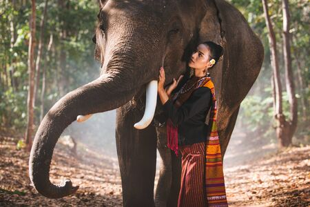 Elephant with beautiful girl in asian countryside, Thailand 写真素材