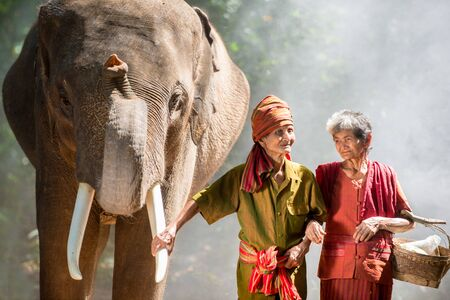 Elephant and farmers in asian countryside in Thailand