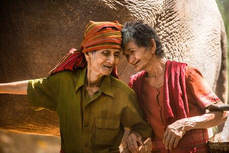 Elephant and farmers in asian countryside in Thailand - Thai elephant in Surin region 写真素材