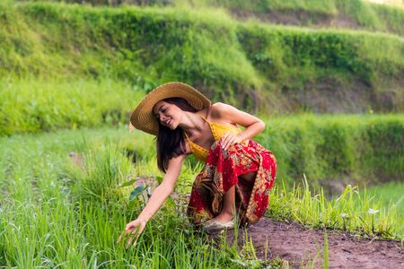 Young woman on green cascade rice field plantation at Tegalalang terrace. Bali, Indonesia - Beautiful female model posing at rice terrace in Ubud Stock Photo