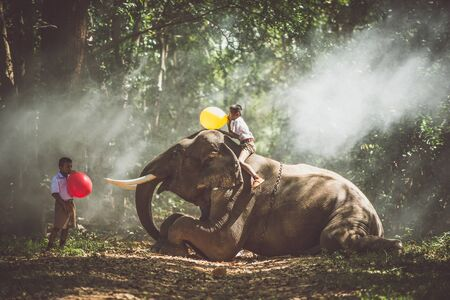 School boy playing in the jungle with his friend elephant