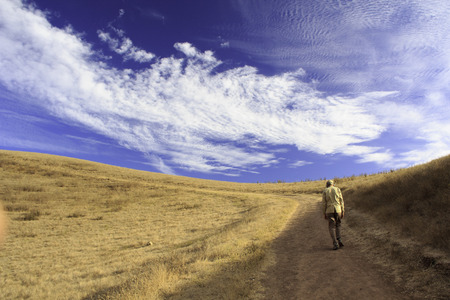 Orange Meadow with Blue Sky - Lonely man walking photo