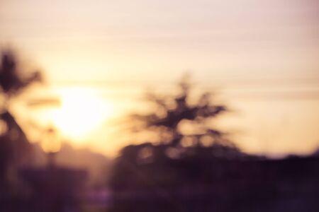 front yard: vintage blur sunset at front yard