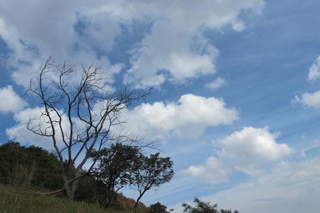 Blue Sky 写真素材 - 112968023
