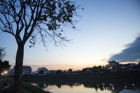 Trees and rivers at sunset 写真素材