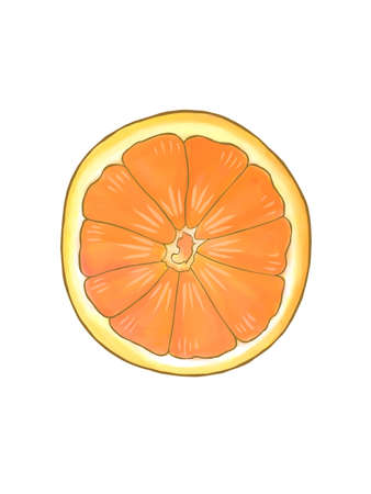 squeezed: Sliced orange half showing detail on a white background