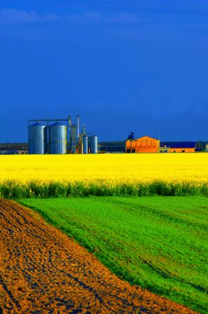 Agricultural industries Stock Photo