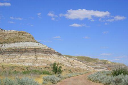provincial: Dinosaur Provincial Park in Albertas badlands, around Drumheller, Alberta