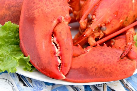 A plate of very tasty cold cooked lobster.