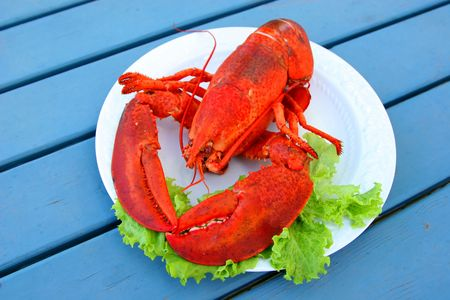 the greens: Cooked Atlantic lobster served on a plate with greens. Stock Photo