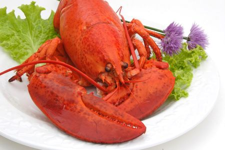Cold cooked lobster on a plate with garnishes of lettuce and chives. Stock Photo