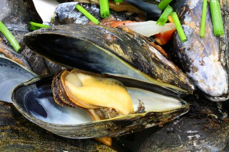 Cooked mussels in the shell with a chive garnish. photo