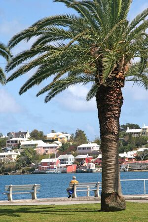 hamilton: A man sitting on a park bench on the waterfront of Hamilton, Bermuda.
