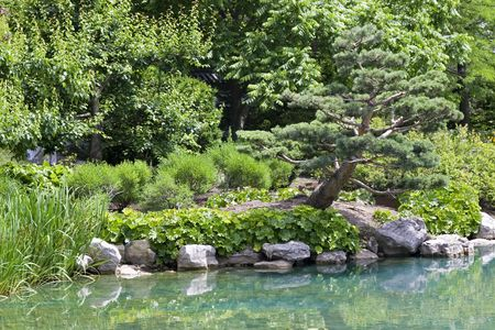 A lone pine reflecting in tranquil waters of a Japanese garden. Stock Photo - 5084214