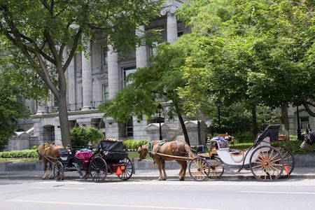 Horse and carriage rides in old Montreal, Quebec, Canada