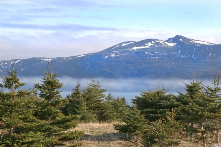 A view of the fog rolling into a bay in Gros Morne National Park (a Unesco site), Newfoundland, Canada.