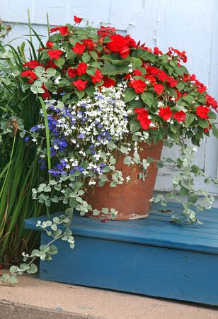 planter: A terracotta garden planter filled with impatiens and lobelia.
