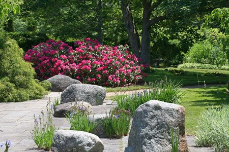 Rocks placed in the hard surface area of an ornamental garden.  Rhododendron flowering in the background.