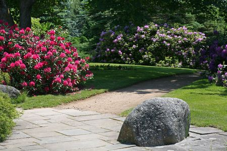 A shady garden using large rocks as an element of its design.  A rhododendron flowering in the background Stock Photo - 6402729