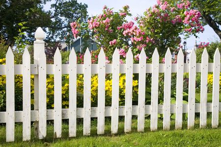barrier: Rustic white picket fence with roses and other flowers in the background. Stock Photo