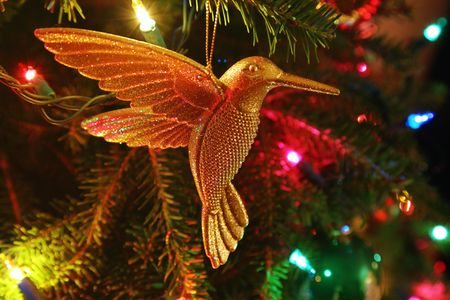 A Christmas decoration in the form of a golden hummingbird hanging on a fully lit Christmas tree.