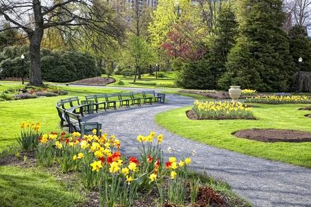 bench park: Una vista de un gran jard�n p�blico en el centro de Halifax, Nueva Escocia, Canad�.  Lleno de camas de narcisos y tulipanes. Foto de archivo