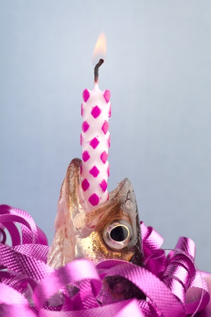 A humourous approach at a  happy birthday wish with a lit candle and a fish ( locally know here as a smelt) surrounded by curly ribbon.