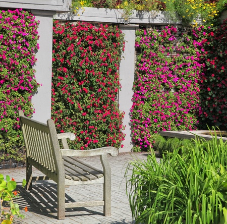A wooden bench in a colorful garden niche with walls of vibrant flowering impatiens. photo